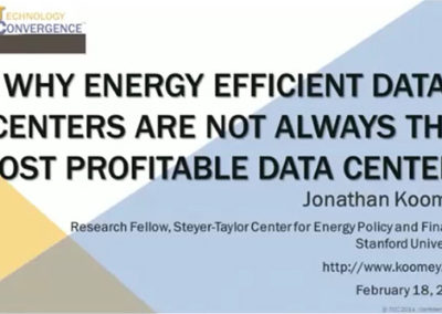 Why Energy Efficient Data Centers are Not Always the Most Profitable Data Centers